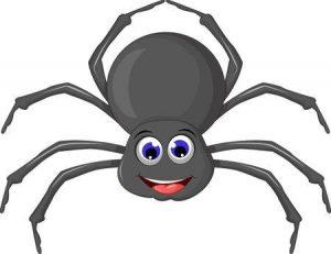 angst voor spinnen