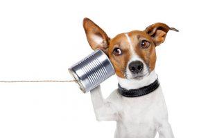gezond communiceren en gezonde gespreksvoering